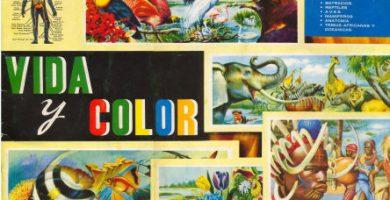 portada-album-vida-y-color